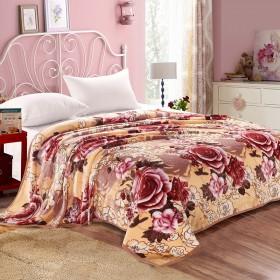 加厚毛毯被子珊瑚绒毯子法兰绒加大床单盖毯午睡双人毛