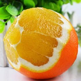 8斤80以上大果17-20个山区脐橙