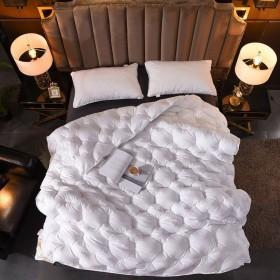 罗莱品牌羽绒被95%白鹅绒全棉单双人保暖加厚秋冬被