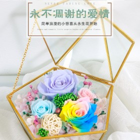 永生花几何玻璃微景观花房送女友礼物家居装饰摆件