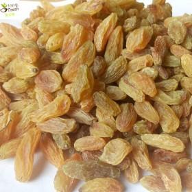 新货大颗粒无籽树上黄葡萄干500克新疆吐鲁番特产