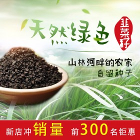 农家韭菜子野生男性泡茶泡酒正宗韭菜籽养生茶500g
