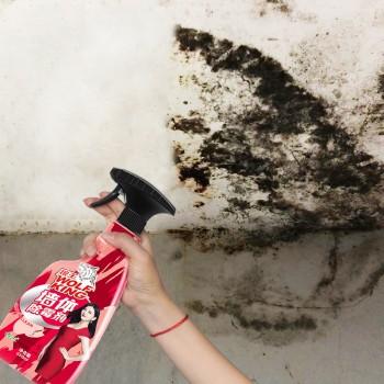 墙体除霉剂墙体墙面去霉菌防霉剂白墙壁纸发霉斑清洁剂