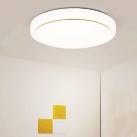 【40cm】LED吸顶灯圆形白光过道吊灯走廊阳台灯