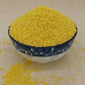东北黑龙江小米新米农家杂粮小米粥养胃佳品宝宝米2斤