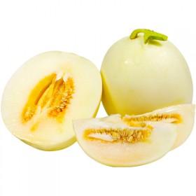 【10斤】甜瓜羊角蜜绿宝哈密瓜白瓜香瓜当季新鲜水果