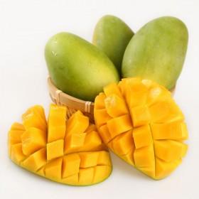 【10斤】越南芒果青皮香玉芒特大青芒甜心芒当季水果