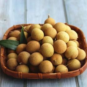 【5斤】新鲜龙眼桂圆当季时令水果新鲜水果泰国龙眼