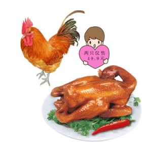 两只装阿胶烧鸡下酒菜五香味童子鸡拼装扒鸡1000g
