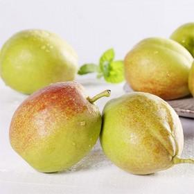【5斤】新疆库尔勒香梨梨子当季水果新鲜水果脆梨酥梨