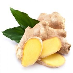 【10斤】大黄姜老姜土姜调味鲜姜生姜月子姜新鲜果蔬
