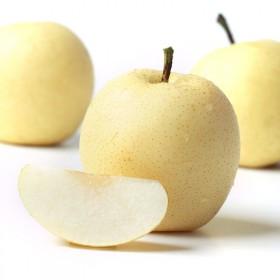 【5斤】河北皇冠梨梨子雪梨酥梨新鲜水果当季水果香梨