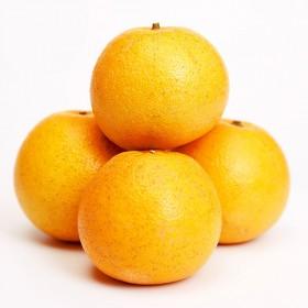 【10斤】常山胡柚柚子新鲜水果黄心西柚时令水果新鲜