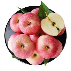 【10斤】丑苹果陕西红富士高山苹果新鲜水果当季水果