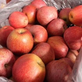 【10斤】丑苹果红富士高山苹果新鲜水果当季水果冰糖