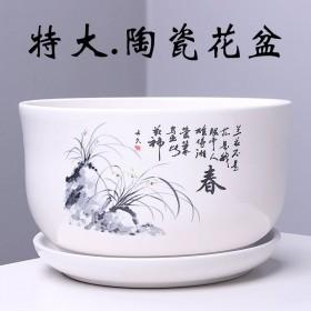 中号14厘米花盆陶瓷清仓室内绿萝绿植多肉阳台花盆