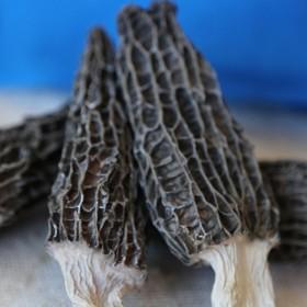羊肚菌羊肚蘑干货5g羊肚菇内蒙古特产菌菇蘑绝无熏硫