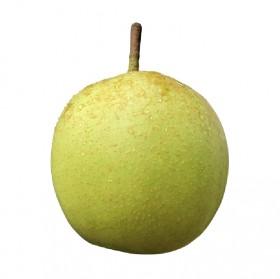 新鲜脆甜翠冠梨正宗新鲜梨当季现摘脆甜水果8斤