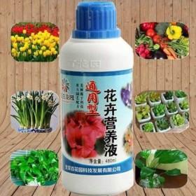 花卉营养液通用盆栽富贵竹专用多肉植物草培肥料促销