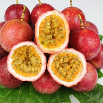 广西百香果3斤包邮热带水果新鲜现摘特级大果一级大红