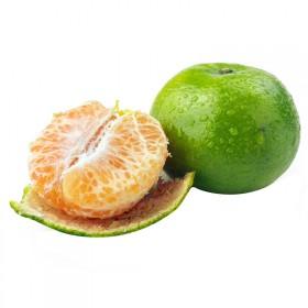宜昌蜜桔当季新鲜时令孕妇水果带箱5斤橘子早熟酸甜桔