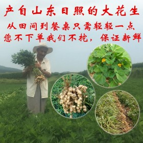 新鲜大花生湿花生5斤装现挖现卖老农家土肥自种自产自