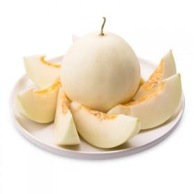 甜瓜 新鲜应季小香瓜 哈密瓜 10斤包邮新鲜水果