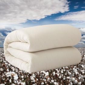 手工棉花被芯春秋被双人垫絮棉絮床垫学生单人宿舍被褥