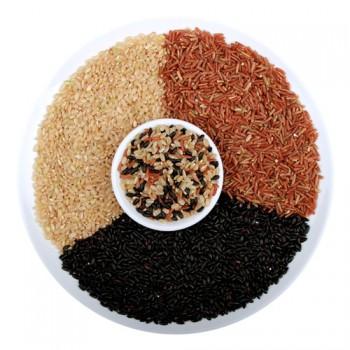 三色米红米糙米黑米胚芽米500克