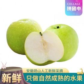 新鲜砀山梨皇冠梨香梨早酥梨当季水果现摘翠冠梨5斤