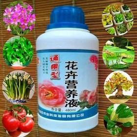 1瓶营养液花肥料植物通用