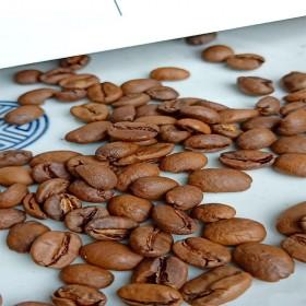 MOBYS魔焙咖啡-10g咖啡体验装
