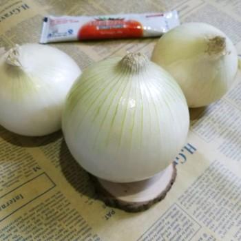 新疆直发白皮牙子白皮洋葱手抓饭食材5斤