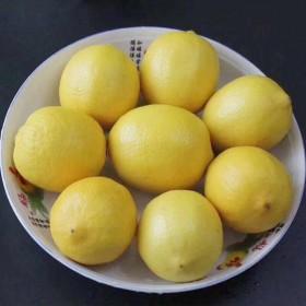2个中大果100-130克黄柠檬