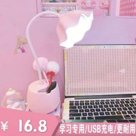 LED台灯少女心护眼学习写字防近视USB充电卧室床