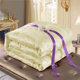 蚕丝被8斤6斤重冬被品牌桑蚕丝被多规格被芯被子
