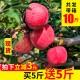 苹果水果新鲜当季带箱5斤批应季脆甜山西红富士冰糖  2404097
