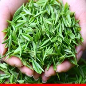高山云雾茶1斤大份量茶叶绿茶绿茶叶日照高清香浓香新