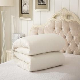 【5斤】手工棉被垫被双人冬被加厚保暖学生宿舍棉被子