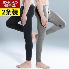 2條裝  男士秋褲男單件純棉保暖褲線褲棉毛襯褲薄款