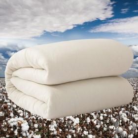 【9斤 新疆纯棉花被子】被芯冬被学生宿舍单人棉被