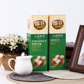 (1000ml 2瓶装)椰容椰汁植物蛋白饮料
