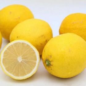 榨汁黄柠檬2斤4-10个