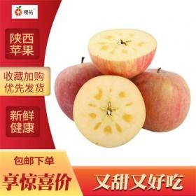 陕西富平新鲜水果红富士苹果当季脆甜富士苹果10斤整