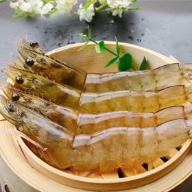 青岛大虾海虾顺丰包邮