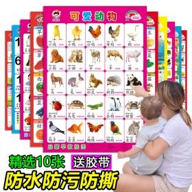 宝宝早教认知挂图无声0-3-6岁婴幼儿童看图识字挂