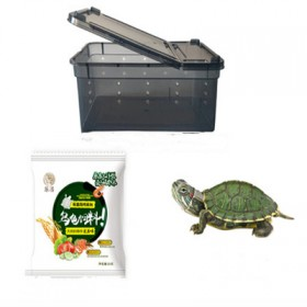 小乌龟x带盖乌龟盒x30天龟粮
