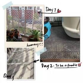 塑料网格防护阳台网养殖网防坠网片儿童