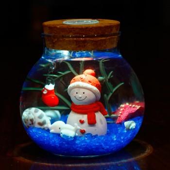 圣诞节礼物许愿瓶
