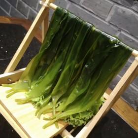 鲜嫩海带苗500g火锅烫三秒即食半干裙带菜干货盐渍